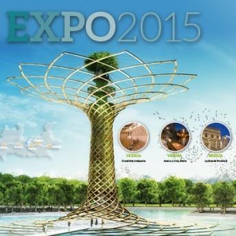 expo_2015_imm_evid